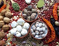 Bolivian Food Salem Company