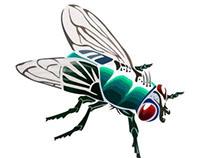 Mosca - Fly
