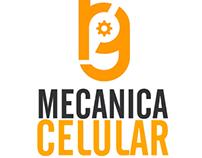 Mecánica Celular