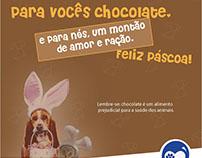 Projeto PATINHAS.COM'AMOR