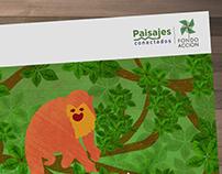 Carpetas Paisajes Conectados - Caquetá