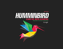 Infographic Humminbird 2013
