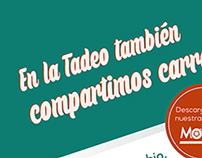 Flyer Movers tadeo