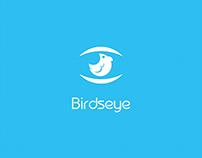 Identidade Visual Birdseye