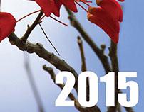 Calendário (Calendar) 2015