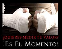 torneo MMA