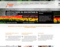 Sitio Web Camara de Comercio Colombo-Holandesa