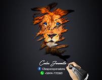 Carlos Jaramillo - Designer Graphic