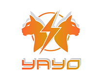 Logo for YAYO TEAM