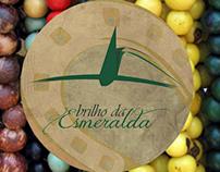 Brilho da Esmeralda