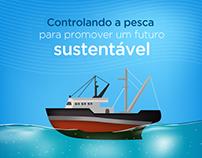 Infográfico Sustentabilidade para o Bacalhau da Noruega