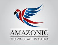 Amazonic - Identidade Visual