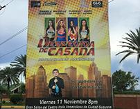 Obra de teatro DESPEDIDA DE CASADA.
