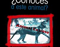 Campaña Publicitaria para la protección animal