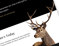 Home Page Design Concept for Hunting Lodge