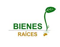 Logotipo para empresa de bienes raíces