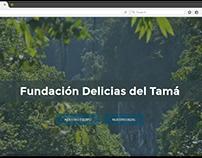 Página Web Informativa