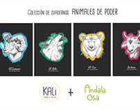 Animales de Poder Dreaming Animals
