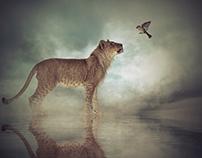 El león de las neblinas