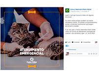 Redação Social Media - Posts Promocionais