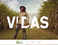Impulsando a Colombia pagina web