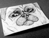 Pug Sketch!