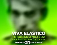 Flyer recital Viva Elástico