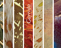 Garrida | Proyecto académico 2009