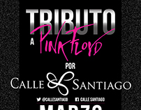 Poster Calle Santiago: Tributo a Pink Floyd