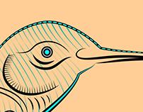 Ilustración de Colibri