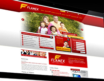 WebDesign do Site da Financeira Flamex