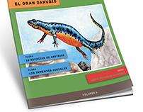 Ilustración y diseño de tapa de revista.
