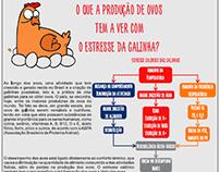 Infográfico - O estresse da Galinha