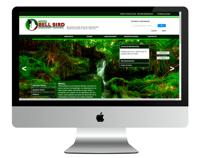 Diseño Web para Hotel Bell Bird Monteverde
