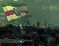 Brazillian Soccer Champion 2016 - Palmeiras