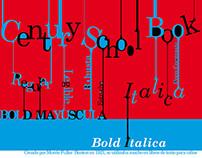 Poster Century School Book