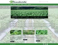 CleanHerbs Landing Page