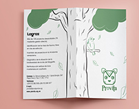 Brochures and logo design