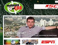 prorrogacao.com.br