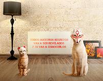 Cosas de Perros y Gatos | PURINA