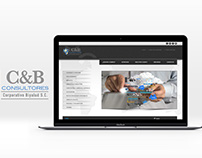 Paginas web diversas empresas 2016