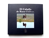El Caballo de Raza Chilena