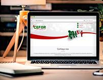 CEFOR - Website em 2015