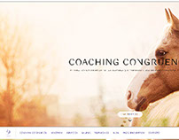 Diseño Web -  One Page - Wordpress