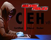 Hackin Público - 4ta Revista