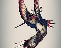 Ink-Colibri