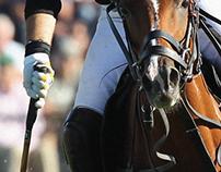 Abierto de polo 2014 - Palermo