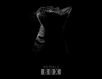 proyecto personal Caja de Animales