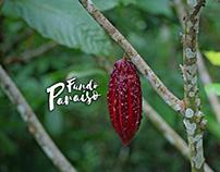 """Proyecto Fotografía y Logo """"Fundo Paraíso"""""""