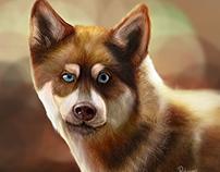 Caricatura Perro